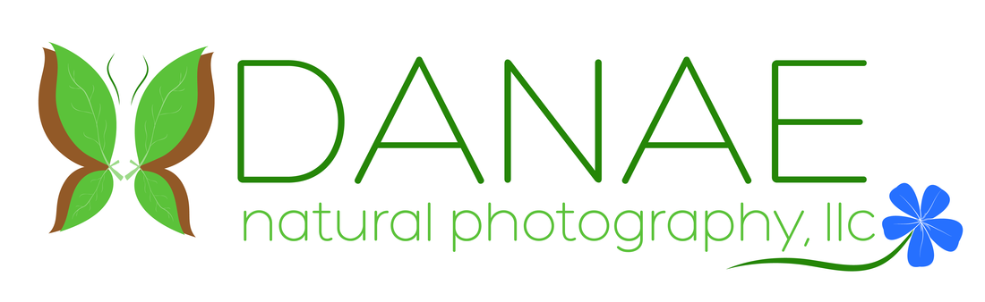 Print Release Form - Danae Natural Photography, LLC (949) 235-4884